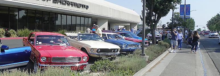 Mustangs row