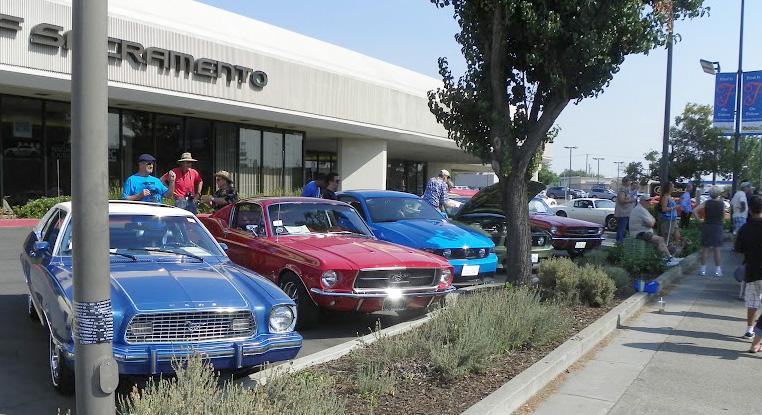 Mustangs row 2