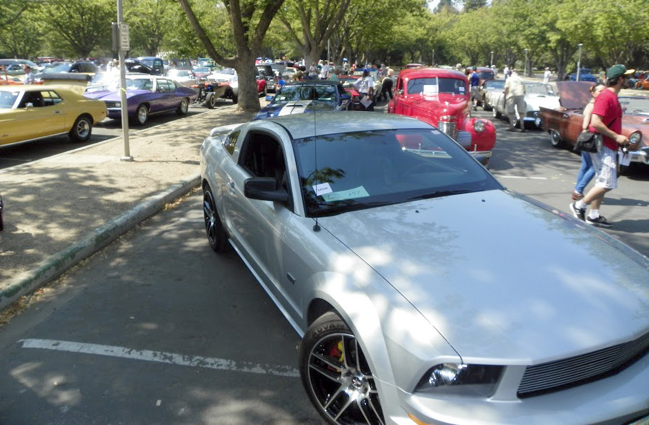 Silver mustang